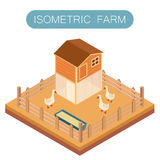 Casa isométrica de la granja para el ganso Imágenes de archivo libres de regalías