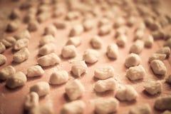 Casa italiana di gnocchi della patata fatta Fotografia Stock