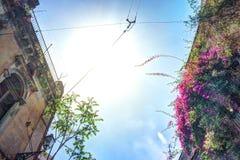 Casa italiana vieja con el balcón adornado con las flores frescas Fotos de archivo