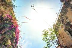Casa italiana vieja con el balcón adornado con las flores frescas Fotografía de archivo libre de regalías