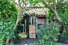 Casa lamentable cubierta por el árbol Imágenes de archivo libres de regalías