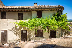 Casa mediterránea con la planta del vino y el cielo azul Imagen de archivo