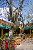 Casa mexicana Fotos de Stock