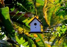 Casa minúscula do pássaro cercada por árvores de banana no por do sol nas chaves de Florida Imagem de Stock