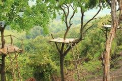 Casa na árvore Foto de Stock