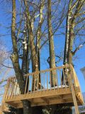 A casa na árvore de sete árvores Imagem de Stock Royalty Free