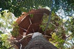 Casa na árvore grande fotografia de stock royalty free