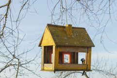 Casa na árvore para os pássaros, Fotos de Stock Royalty Free