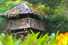Casa na árvore tropical imagem de stock royalty free
