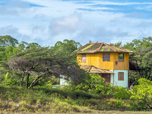 Casa na floresta Foto de Stock Royalty Free