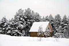 Casa na madeira Foto de Stock