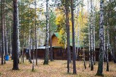 A casa nas madeiras Imagem de Stock