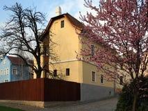 Casa nativa del Sigmund F Imagen de archivo libre de regalías