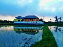 Casa no arroz do campo Fotos de Stock