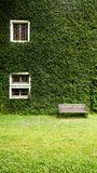 Casa no campo com a parede da planta de Coatbuttons entre o natu verde Fotografia de Stock Royalty Free