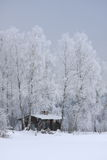 Casa no inverno Fotos de Stock