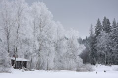 Casa no inverno Imagens de Stock Royalty Free