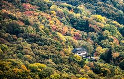 Casa no meio de uma floresta imagem de stock royalty free