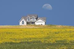 Casa no prado Imagens de Stock Royalty Free