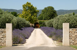 Casa no Provence foto de stock royalty free