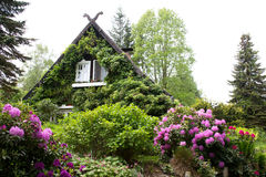 casa no Spreewald Foto de Stock