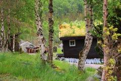 Casa noruega con el tejado de la hierba fotografía de archivo libre de regalías