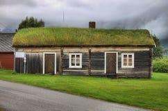 Casa norueguesa do telhado da grama imagens de stock