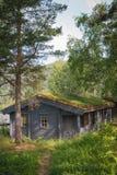 Casa norueguesa típica com grama no telhado fotos de stock