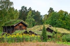 Casa norueguesa tradicional com telhado da grama O museu norueguês Fotos de Stock Royalty Free