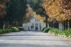 Casa olandese del capo nei winelands Fotografia Stock Libera da Diritti