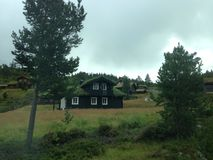 Casa ordinaria in Norvegia con erba sul Fotografia Stock