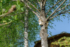 Casa original del pájaro Imagen de archivo libre de regalías
