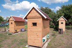 Casa para apitherapy Foto de Stock