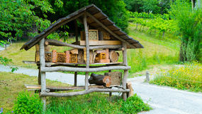 Casa para las abejas de ramas de árbol Fotografía de archivo