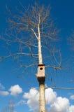 Casa para los pájaros Foto de archivo