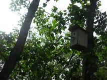 Casa para pássaros Fotos de Stock Royalty Free