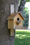 Casa para pássaros na árvore fotografia de stock royalty free