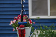 Casa-passarinho Imagens de Stock Royalty Free