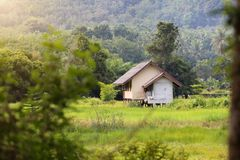 A casa pequena no campo o tempo é boa e quieta fotografia de stock
