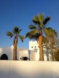 Casa pintada blanca con las palmeras Fotografía de archivo