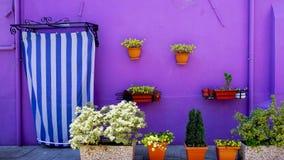 Casa porpora di colore della parete di Burano fotografia stock libera da diritti