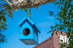 Casa pouco suspensão azul em uma árvore Fotografia de Stock