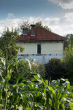 Casa privada vieja en el arbusto fotos de archivo