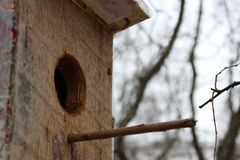 casa que espera sus pájaros imagen de archivo libre de regalías