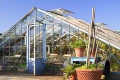 Casa quente velha usada para cultivar videiras Fotos de Stock Royalty Free