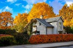 Casa rodeada por los árboles coloreados en un día soleado del otoño Fotografía de archivo libre de regalías