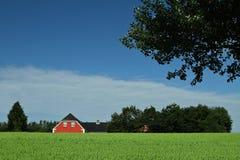 Casa roja en paisajes daneses en el verano Fotografía de archivo