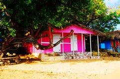 Casa rosa Fotografia Stock