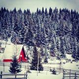 Casa rossa di inverno Fotografia Stock