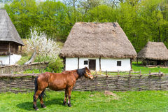 Casa rumena fotografie stock libere da diritti